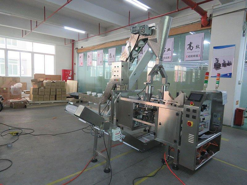 twin pouch packing machine